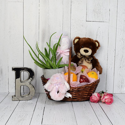 Teddy Bear & Blankets Baby Gift Set, baby gift baskets, baby gifts, gift baskets
