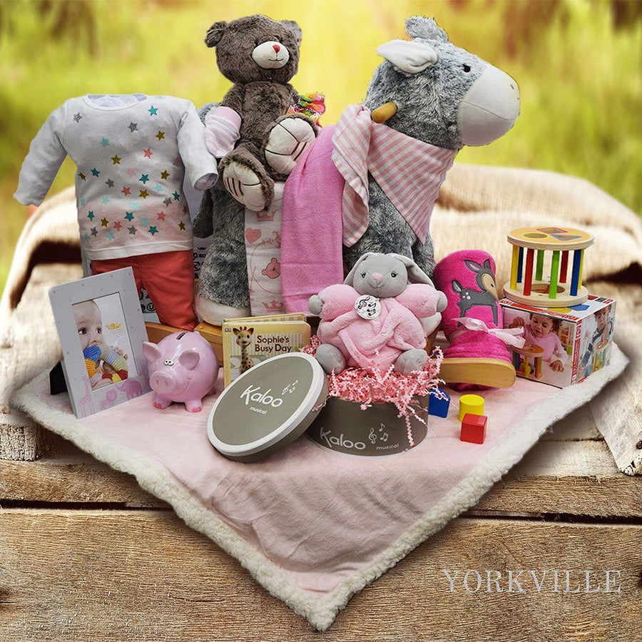 Baby gift baskets yorkvilles canada adventures cuddles baby gift basket negle Choice Image