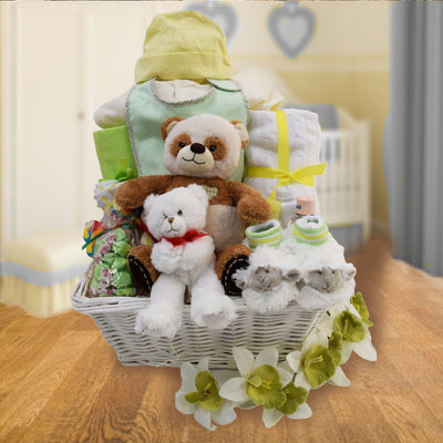 Congratulations on Your New Baby Gifts Basket