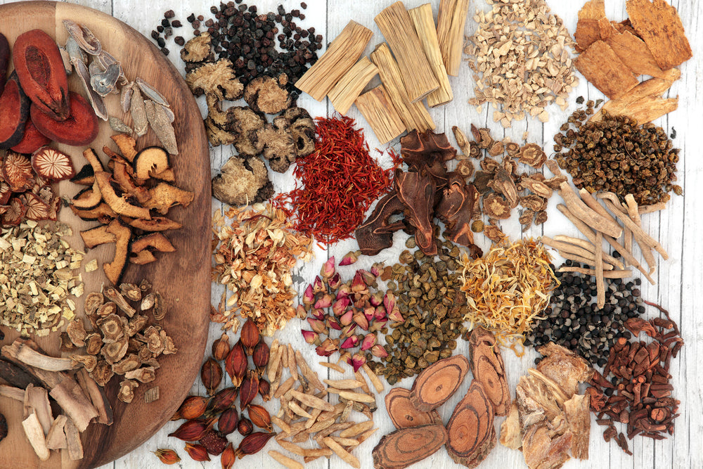 Herbal Ally: Adaptogens 101