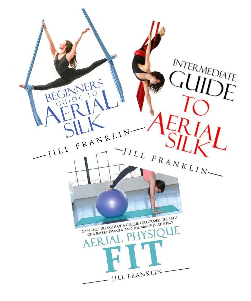 Aerial Physique Book Bundle - Digital Download
