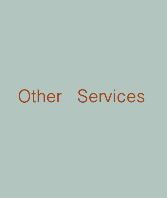 Other services - shdress
