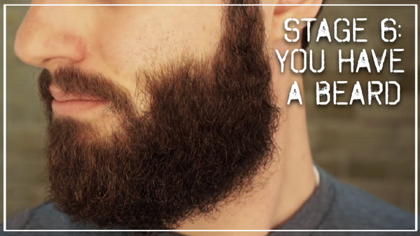 Stage 6- You have a beard