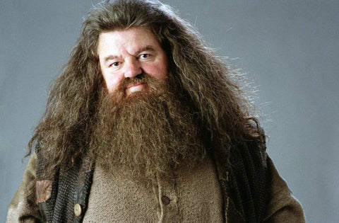 Hagrid in all of his bearded glory