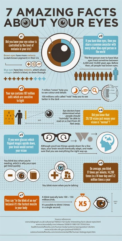 7 Facts Why Your Eyes Are Amazing