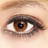 Freshlook Dailies Pure Hazel 10 lenses/box - EyeCandy's