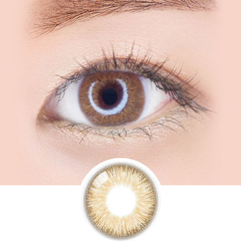 Freshkon x ZIPCY Fall In Brown colored contacts circle lenses - EyeCandy's
