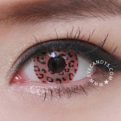 GEO Animation Pink Leopard 2 lenses/box - EyeCandy's