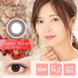 Feliamo 1-Day Sheer Brown colored contacts circle lenses - EyeCandy's