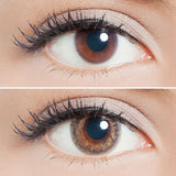 Lilmoon 1-Day Cream Grege colored contacts circle lenses - EyeCandy's