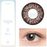 Lucia 1-Day Ash Brown colored contacts circle lenses - EyeCandy's