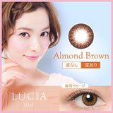 Lucia 1-Day Almond Brown