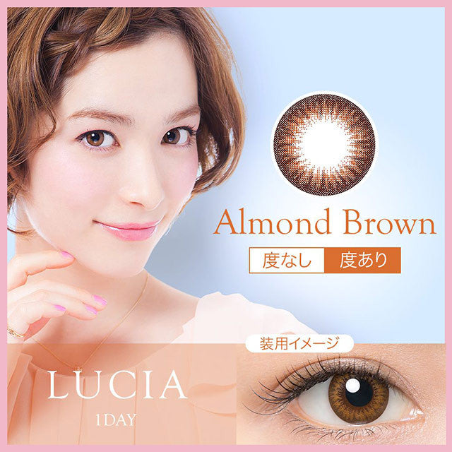 Buy Lucia 1-Day Almond Brown Circle Lenses | EyeCandys