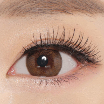 NEO Extra Dali Brown colored contact lenses - EyeCandys