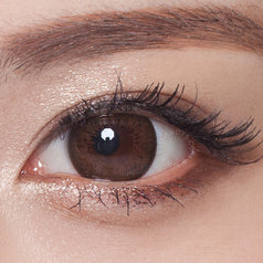 NEO Monthly Extra Dali Brown 2 lenses/box - EyeCandy's