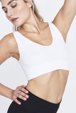 Morningside Park V-Neck Crop