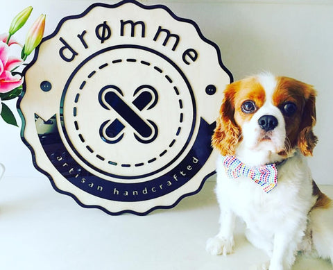 Coco and the dromme logo