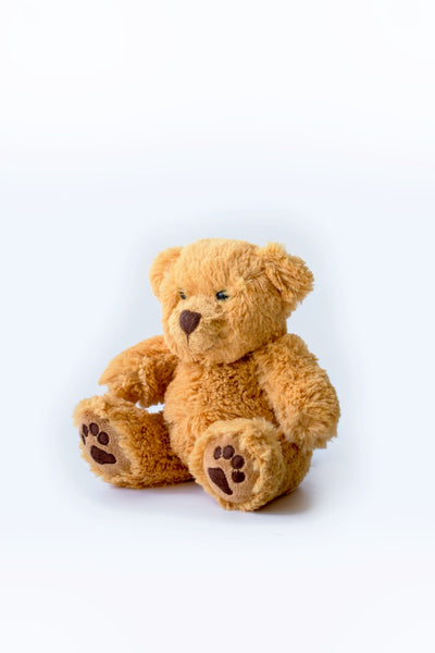 Anthony Nolan Teddy