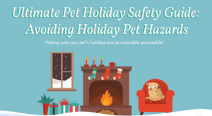 Keeping Your Pets Safe All Year Round: An Infographic