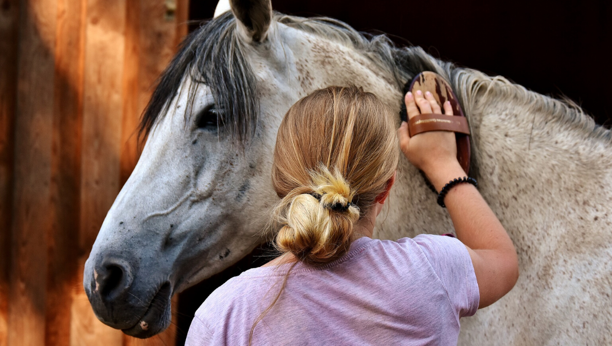 Woman brushing her horse's mane