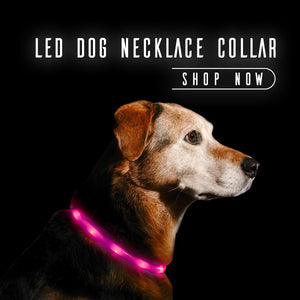 led-dog-necklace-collar