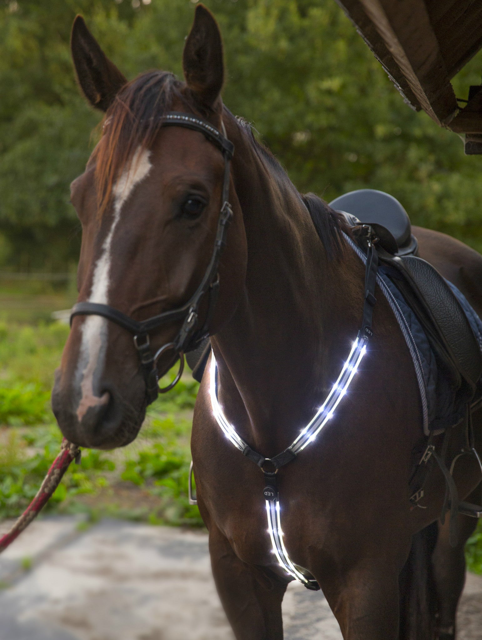 Details about  /Led Horse Harness Collar Breastplate Plate Saddle Tack Leather Sheepskin Ring