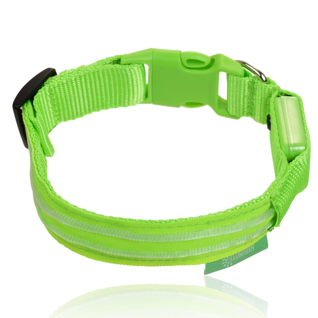 led dog collar illumiseen led dog collar middot neon green