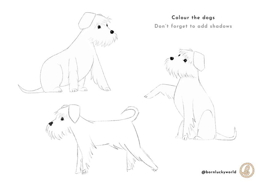 born lucky cute dog colouring in activity