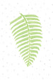 Fern Illustration Print | Scandinavian Nursery Wall Art | Born Lucky