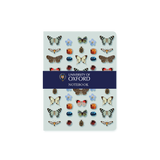 A6 notebook - Oxford Butterfly