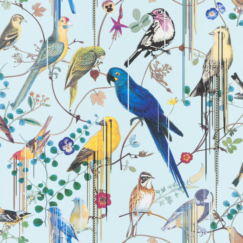 Christian Lacroix 'Birds Sinfonia' Wallpaper Source