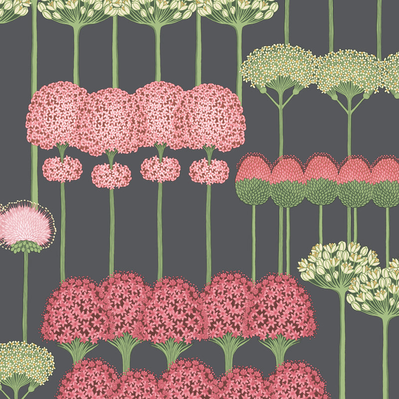 Cole & Son Allium Wallpaper 115/12037