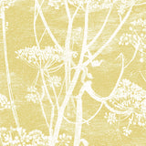 Cole & Son 'Cow Parsley' Fabric F111/5020
