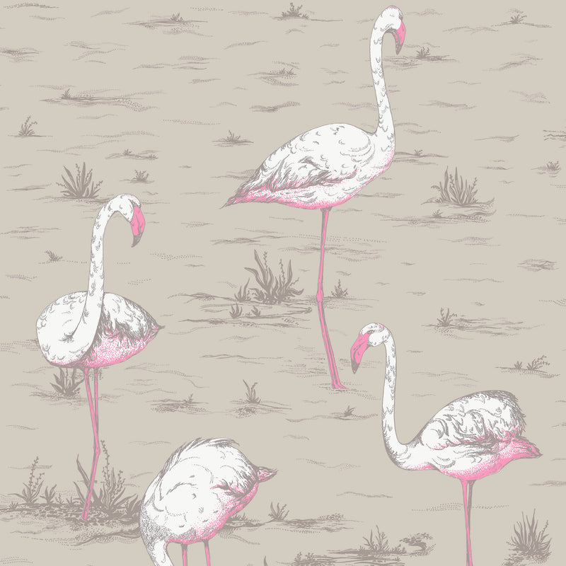 Cole & Son 'Flamingos' Fabric F111/3011