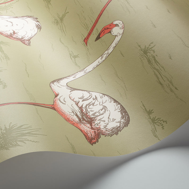Cole and Son 'Flamingos' Wallpaper 112/11038 Detail