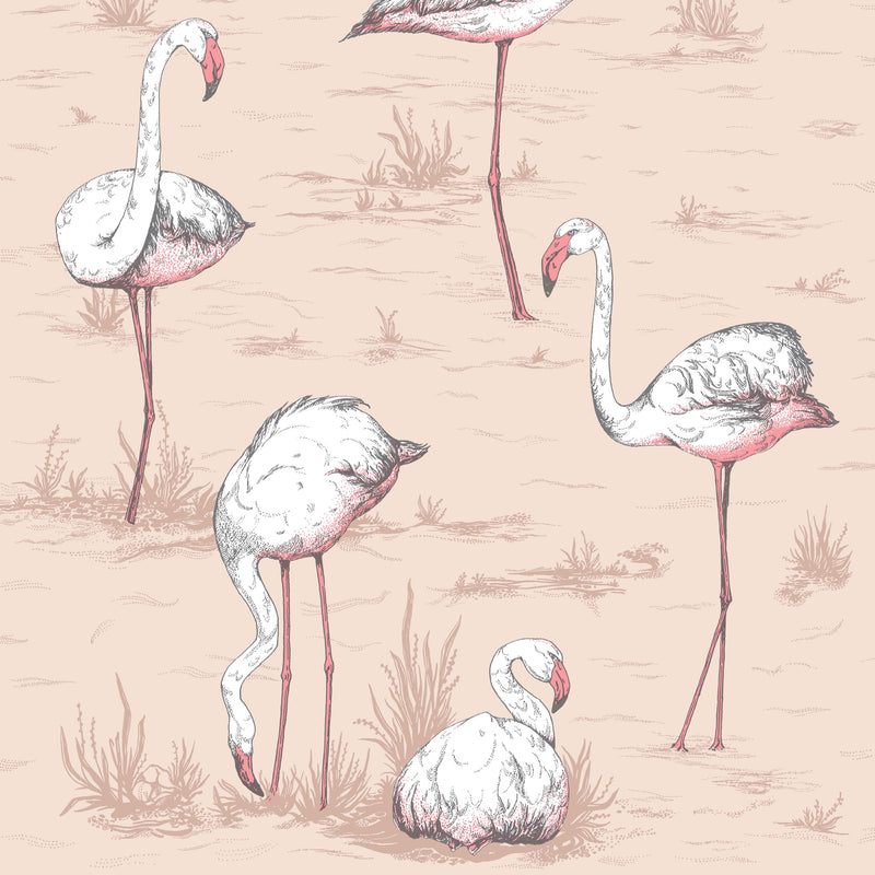 Cole and Son 'Flamingos' Wallpaper 112/11039