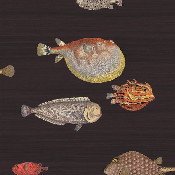 Cole and Son Fornasetti 'Acquario' Wallpaper 97/10048