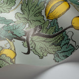 Cole and Son x Fornasetti 'Frutto Proibito' Wallpaper 114/1002 Detail