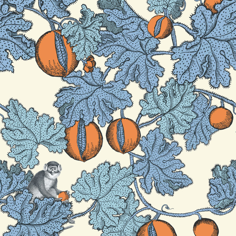 Cole and Son Fornasetti 'Frutto Proibito' Wallpaper 114/1003