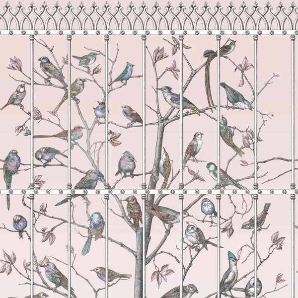 Cole and Son Fornasetti 'Uccelli' Wallpaper 114/11022
