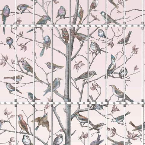 Cole & Son Uccelli Wallpaper