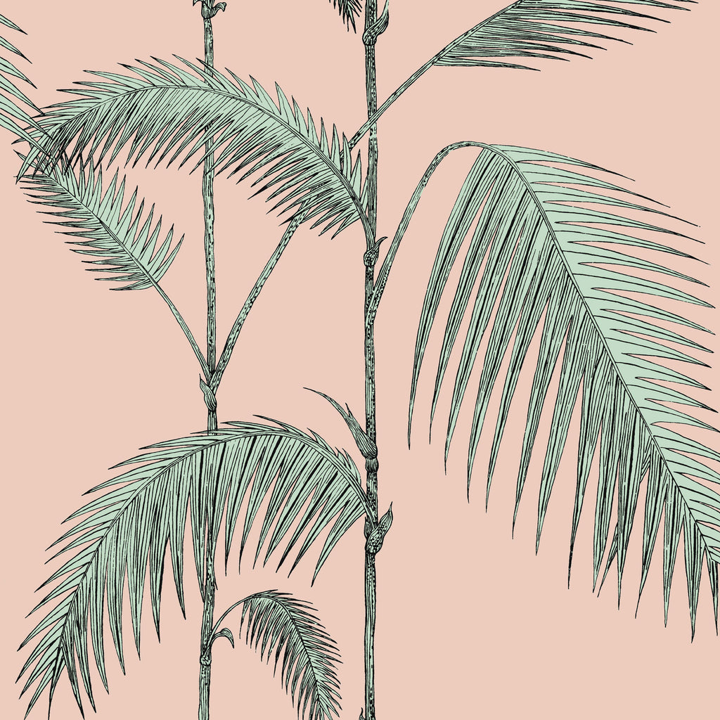 Cole And Son Palm Leaves Wallpaper Alabaster Pink Mint