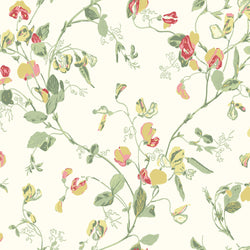 Cole & Son Sweet Pea Wallpaper 100/6027
