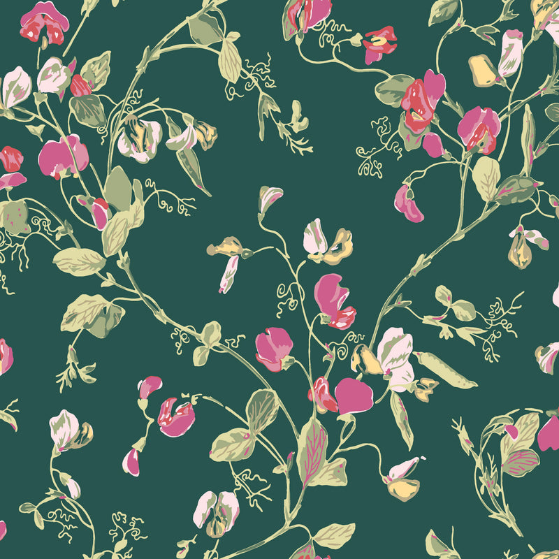 Cole & Son Sweet Pea Wallpaper 100/6033