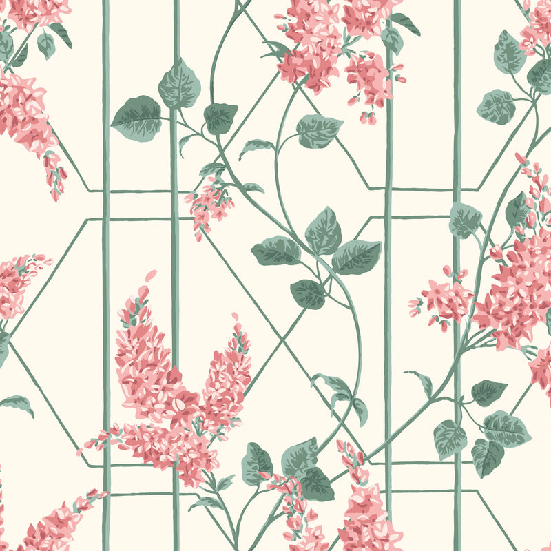 Cole & Son Wisteria Wallpaper 115/5012