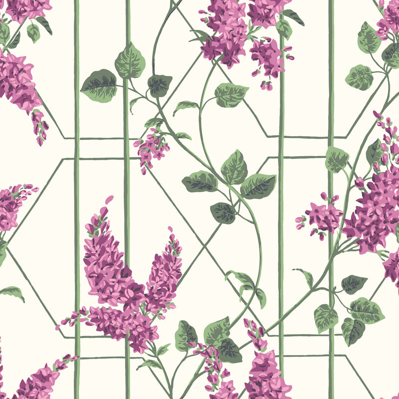 Cole & Son Wisteria Wallpaper 115/5013
