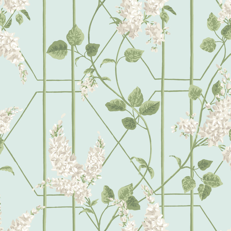Cole & Son Wisteria Wallpaper 115/5014