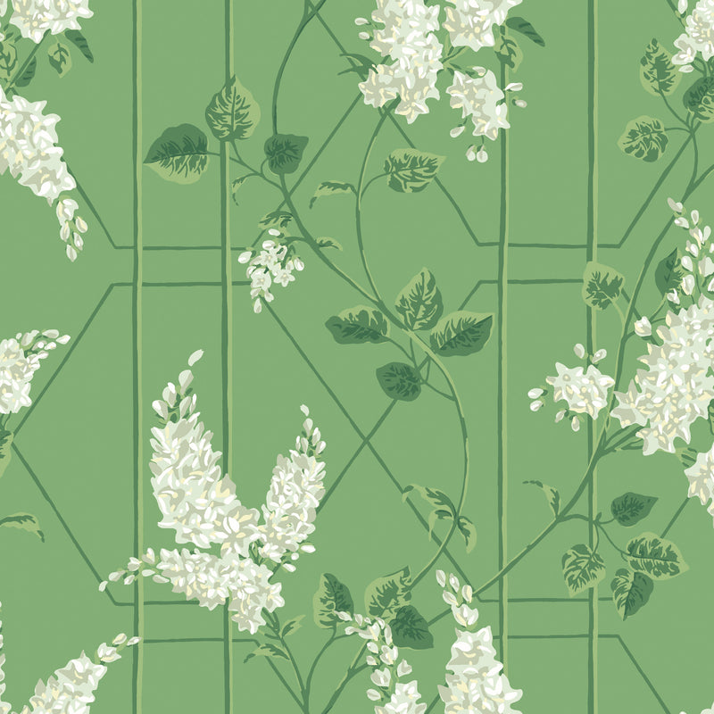 Cole & Son Wisteria Wallpaper 115/5016