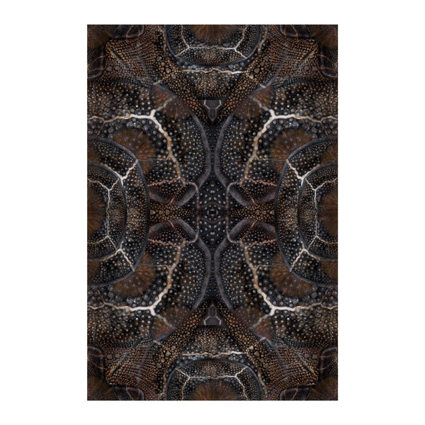 Moooi Carpets Extinct Animals / Blooming Seadragon Rug
