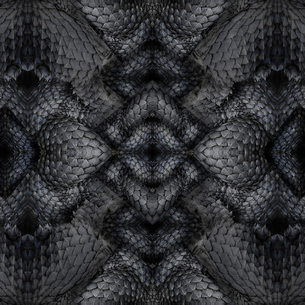 Moooi Carpets Extinct Animals Dwarf Rhino Rug Detail